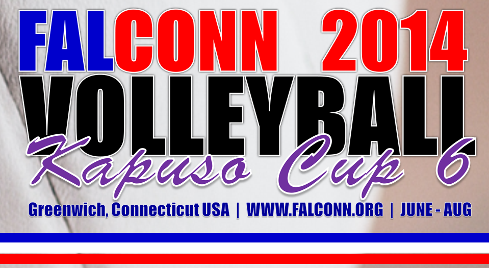 Volleyball_BANNER_2014-56X21-cropped.png